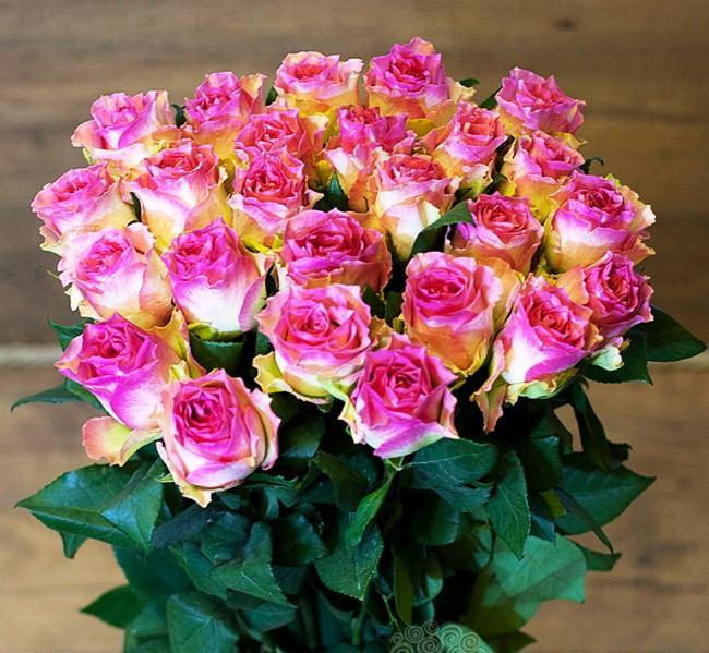 стрижка сорта роз с фото и названиями эквадор можно сделать выбранную